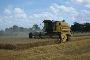 Wsparcia finansowe dla młodych rolników
