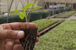 Rolnicy w Małopolsce chcą się uczyć