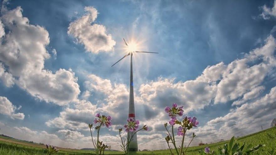 Pieniądze dla przedsiębiorców na rozwój energii odnawialnej
