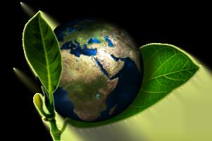 80 mln zł dotacji dla firm, które chcą być eko