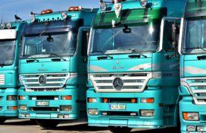 Świadectwo kierowcy – ważny dokument dla kierowców spoza UE